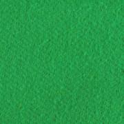 Greenscreen chromakey duk